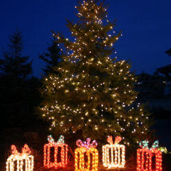 Outdoor Light Trees Christmas: Giant lighted gift boxes with outdoor lighted Christmas tree using LED  lights,Lighting